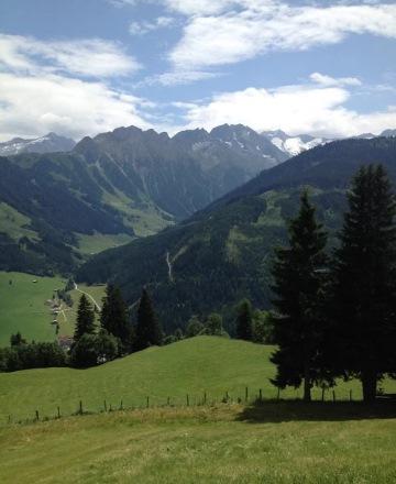 bergen-groen-zomer-sneeuw-gletsjer