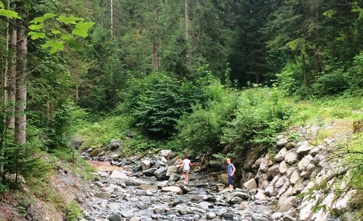 Reiservaring-beekje-kinderen-bossen-wandelen