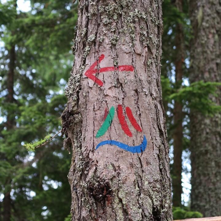 alpe-adria-trail-circular-tour-r04-bewegwijzering