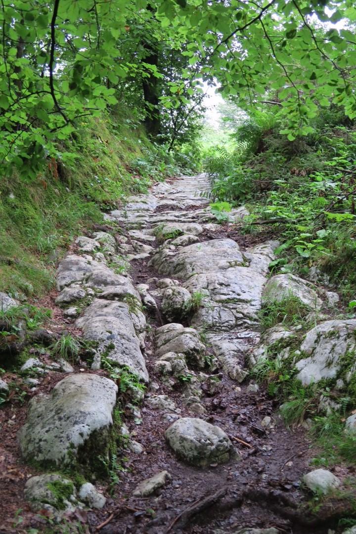 alpe-adria-trail-ronde-etappe-r02-romerweg-federaun