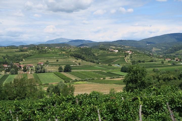 alpe-adria-trail-etappe-e30-wijngaarden-brda