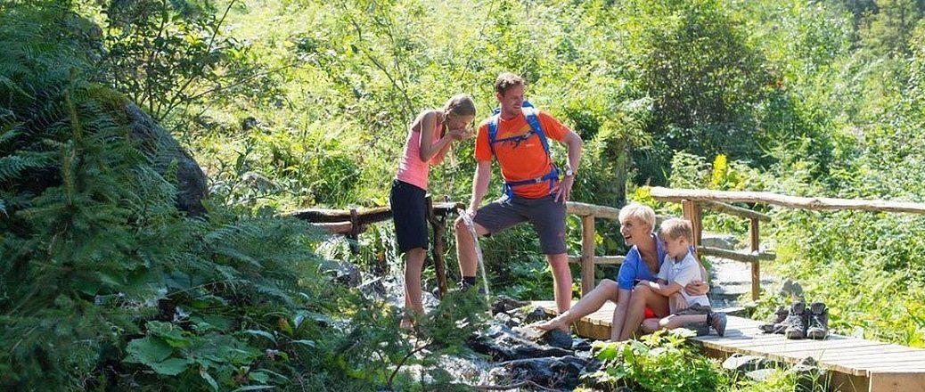 Themawandelingen in Vorarlberg
