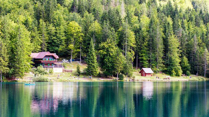 Huisje in bos bij meer
