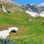 5 indrukwekkende wandeltochten in de Alpen