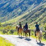 Een unieke ervaring: paardrijden in de Alpen