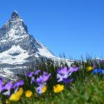 Zwitserland: paradijs voor iedere wandelaar