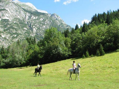 Twee ruiters te paard op groene weide voor bergen