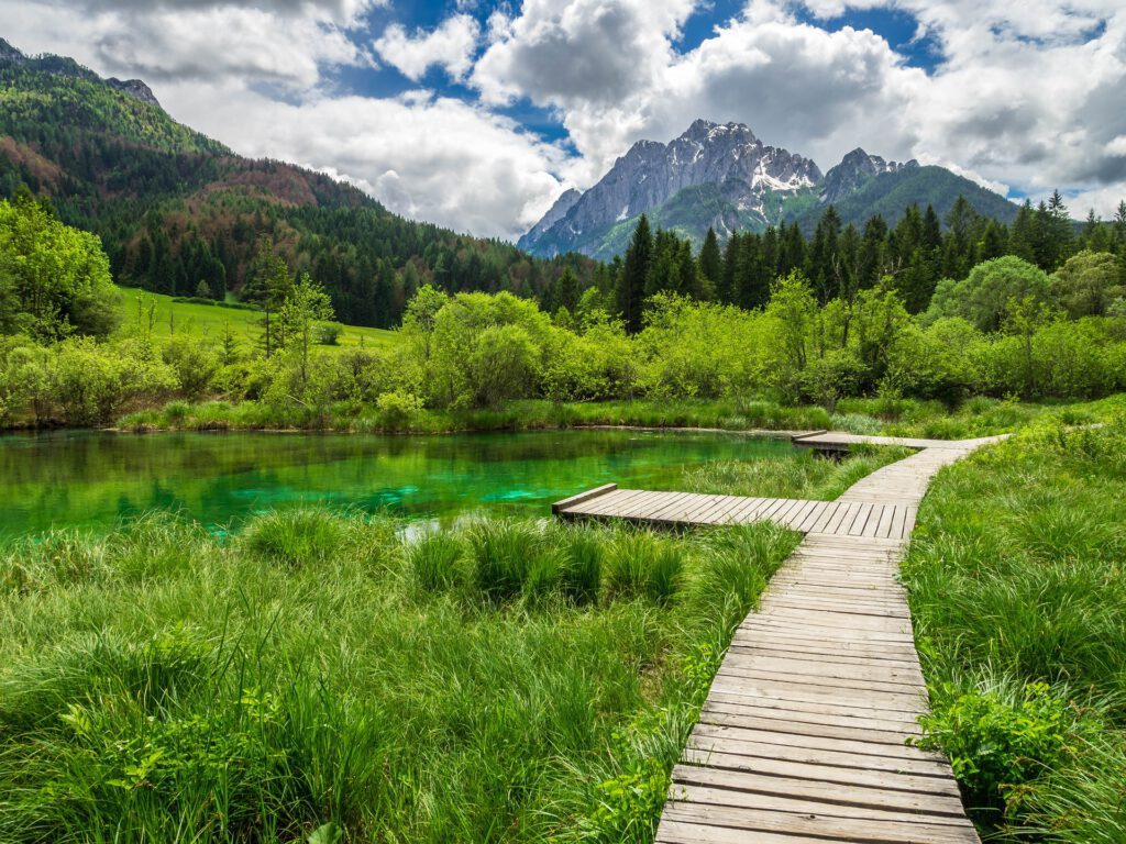 Houten vlonders door groen gras in de bergen