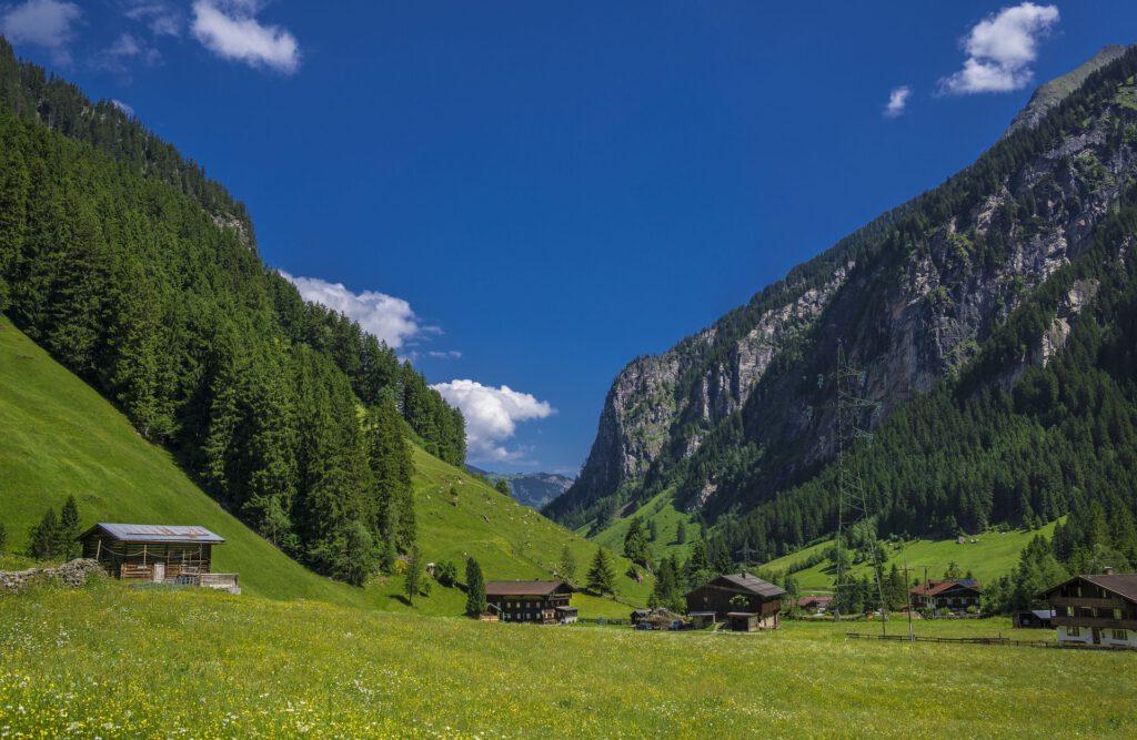 Groen dal tussen bergen met paar huizen