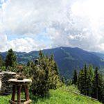 Geniet van de bergzomer in het Oostenrijkse Alpbachtal