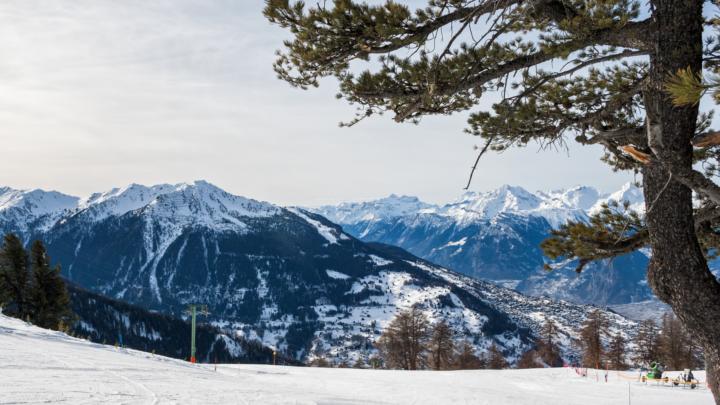 De alpen in de winter
