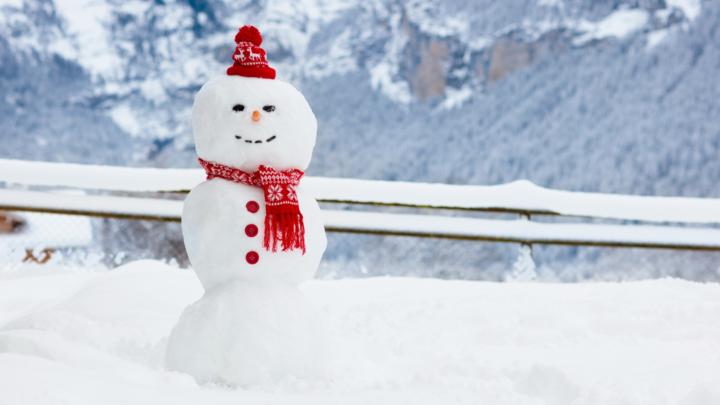 Sneeuwpop Alpen
