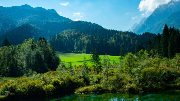 Juliana Trail : Zelenci
