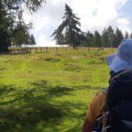 Etappe 18 Alpe Adria Trail: Arriach naar Gerlitzen Alpe