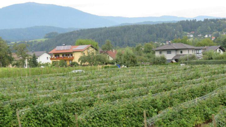 Etappe 21 Alpe Adria Trail